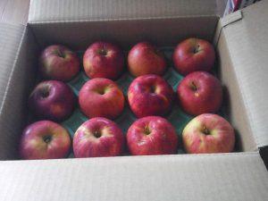 箱入りのりんご