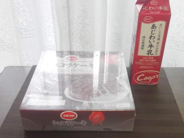 冷凍 ショコラケーキ